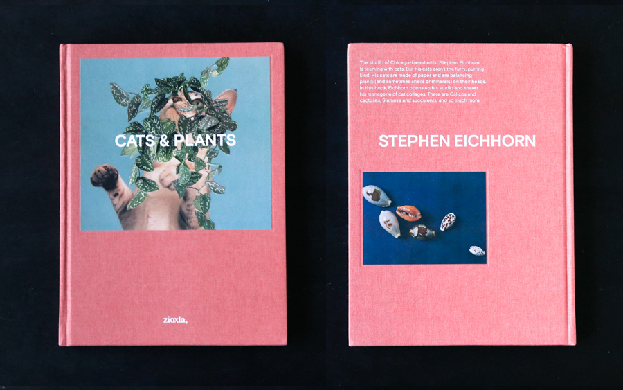 書籍の紹介:CATS&PLANTS by Stephen Eichhorn